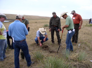 Knowing what types of ecological sites are present on rangelands helps guide management practices and helps land managers recognize threats and damage to these ecosystems. Photo by Mike Stirling, NRCS.